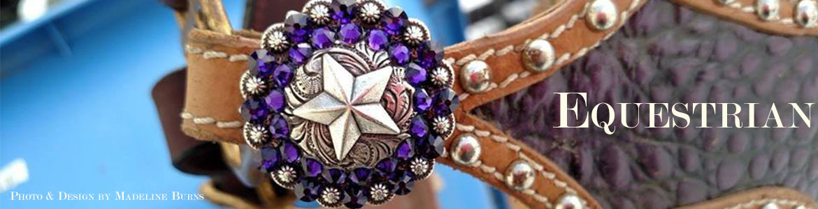 Bling your horse tack with rhinestones